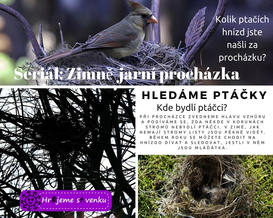 Hledáme ptáčky (1)